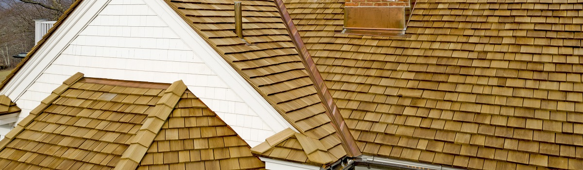 Busy Boys Roofing LTD Images